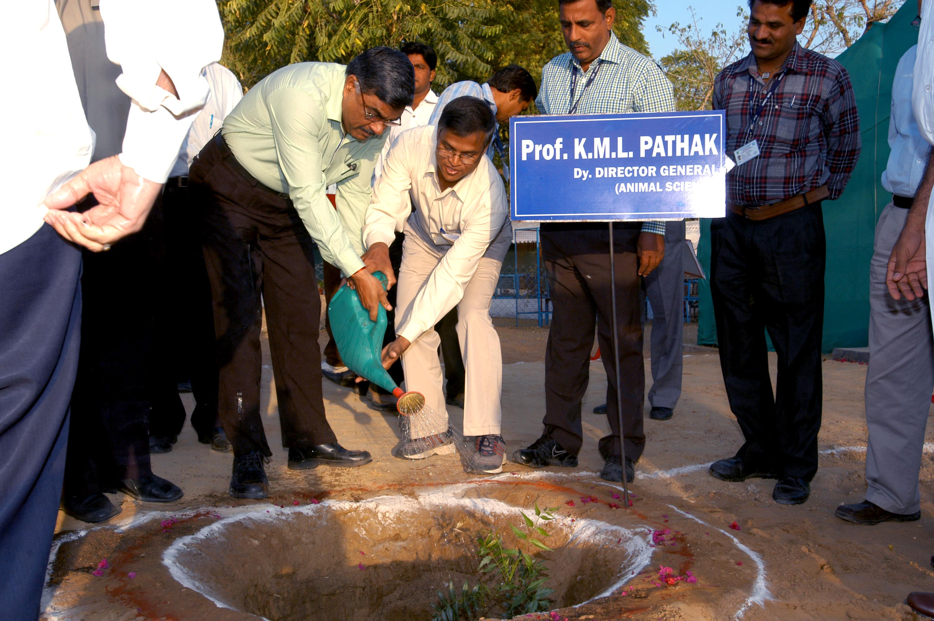 PLantation for Green Enveronment @ CSWRI Campus